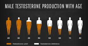 About Testosterone - Egea Medical Weight Loss Center